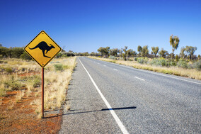 road picture with a kangaroo crossing sign